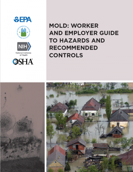 Cover of mold worker employer guide hazards recommended controls guide