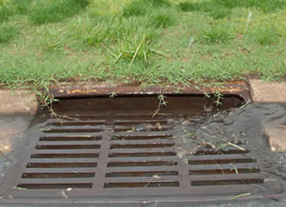 Runoff picking up pollutants and flowing into street drain