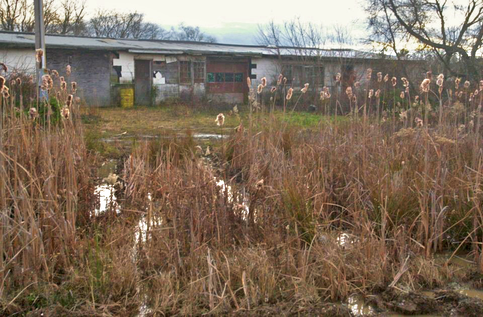 Photo of the Reich Farm Superfund site along Tom's River in New Jersey.