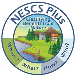 "A graphic showing an illustration of forest and stream with the letters ""N E S C"" around the outside edge"