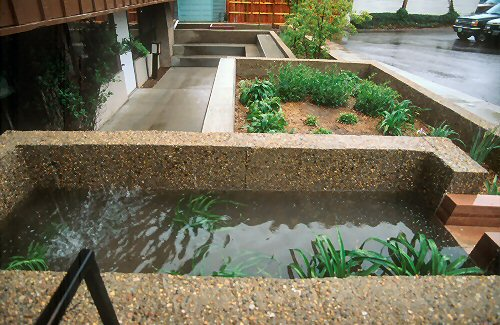 Cement planter box collects rainwater in Boulder, CO.