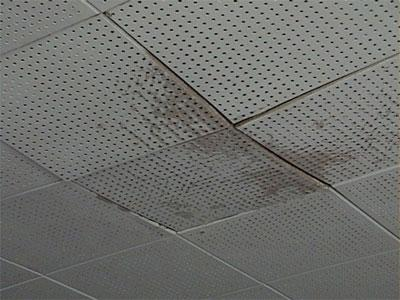 acoustic ceiling tiles with water damage