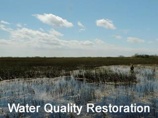Water Quality Restoration