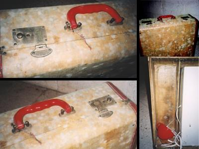 Mold growing on a suitcase stored in a humid basement.