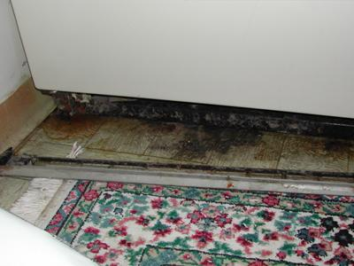 Mold (and dirt) beneath refrigerator due to chronic drip-pan overflows.