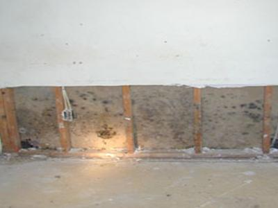 Mold inside a wall.