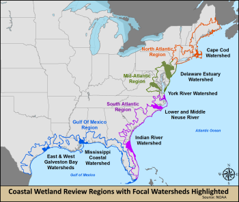 A map of coastal wetland review regions with focal watersheds highlighted