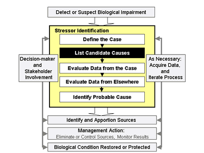 Fig 2-1. Steps to Stressor Identification. This highlights step 2, list candidate causes.