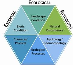 Six Essential Ecological Attributes that describe ecosystem condition