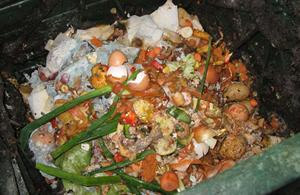 Picture of food wastes.