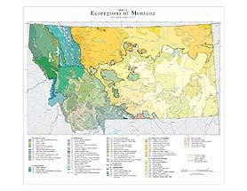Level IV Ecoregions of Montana-- page size