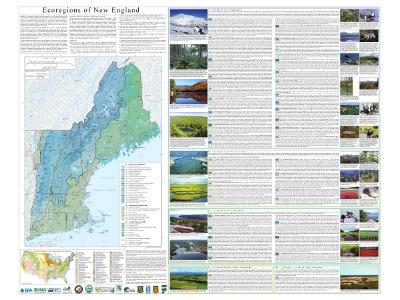 Level IV Ecoregions of New England-- poster front side