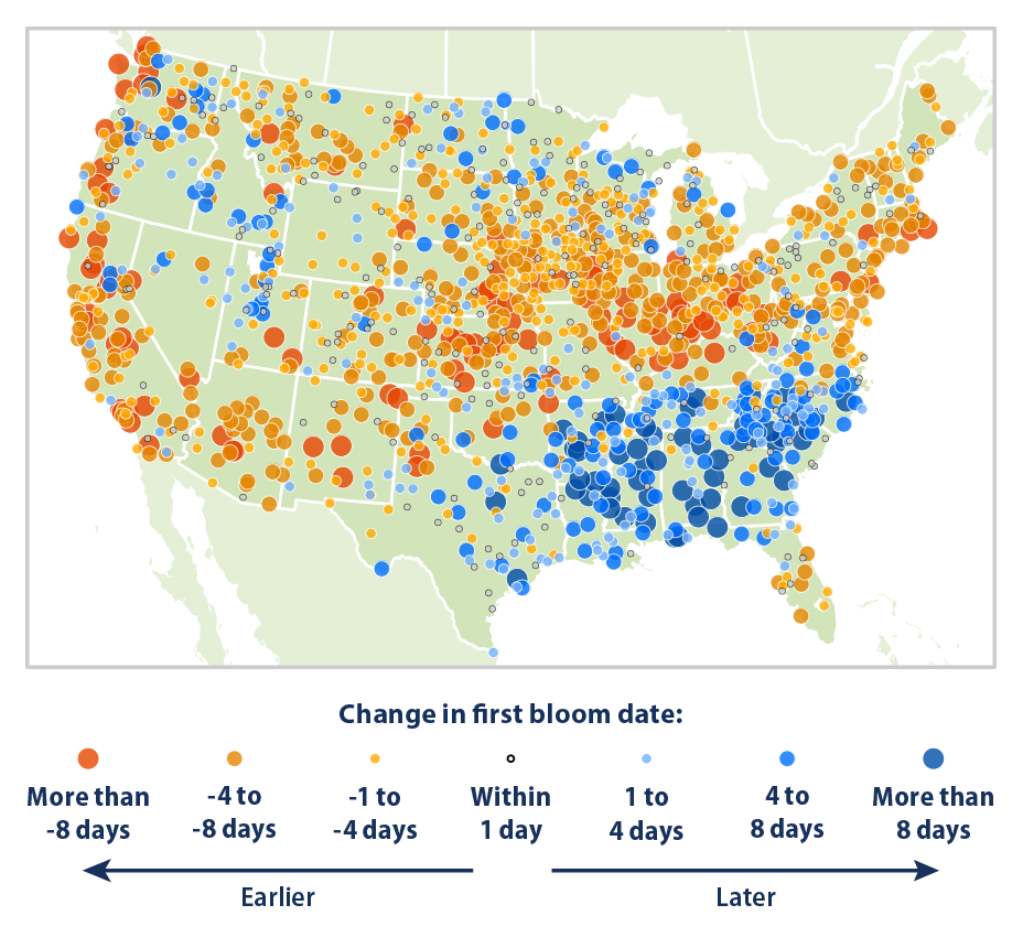 Map showing the change in first bloom dates at weather stations across the contiguous 48 states. This map compares the average first bloom date during two 10-year periods: 1951-1960 and 2006-2015.