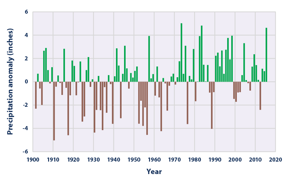Bar graph showing changes in the total amount of precipitation in the contiguous 48 states from 1901 to 2015.