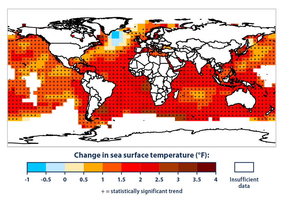Color-coded map of the world showing changes in average sea surface temperature from 1901 to 2015.