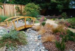 Backyard landscape with mini bridge