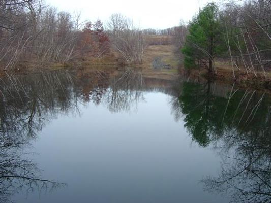 A pond at the C&D Recycling Site