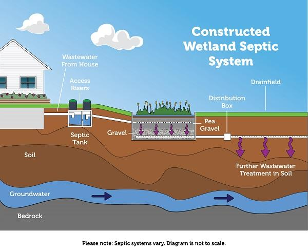 How a constructed wetland system works