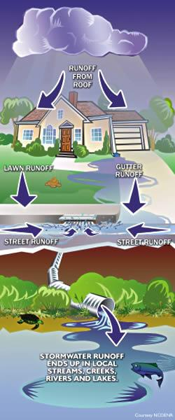 Diagram illustrating where stormwater runoff goes.