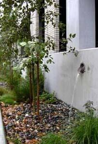 water flowing from disconnected downspout onto permeable gravel and vegetation