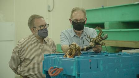 EPA Administrator Wheeler tours the Cape Porpoise Lobster & Bait Company