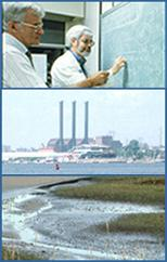 Three images showing water quality instances: scientists, waterway, marsh.